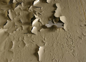 Lead Poisoning Attorney in New York